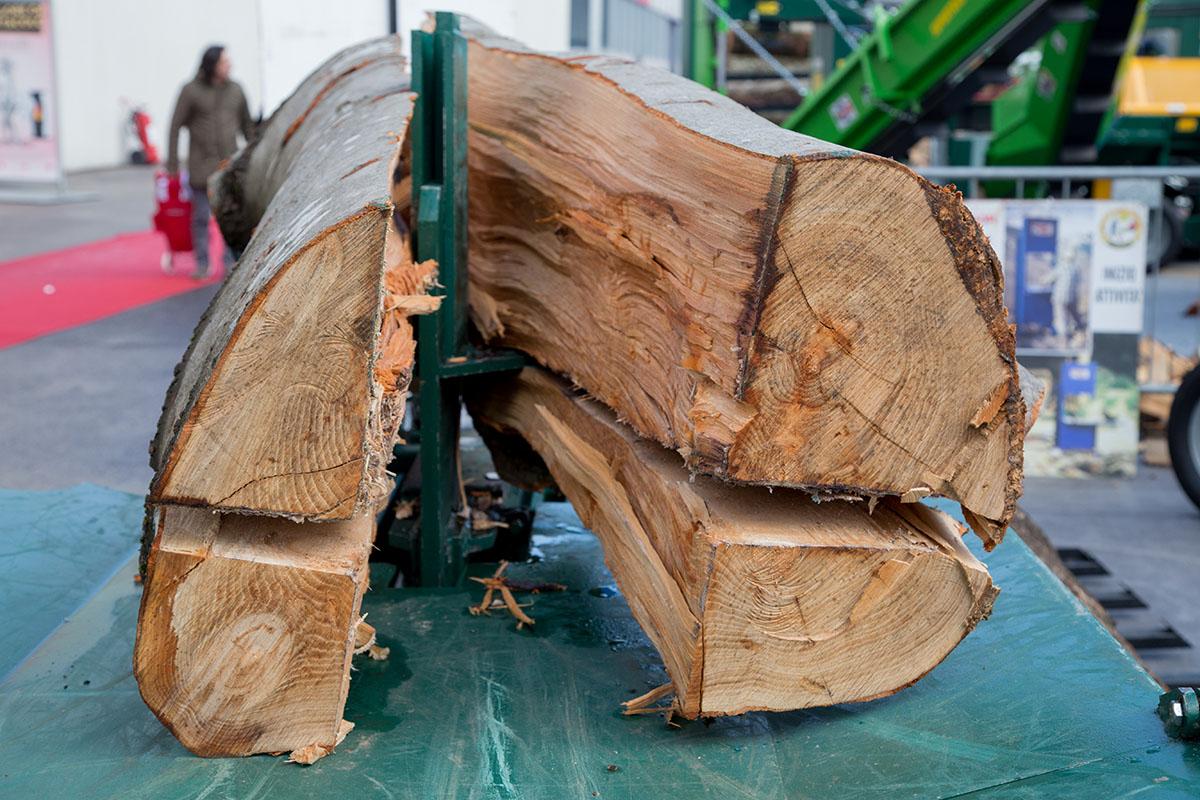 La prima lavorazione dei tronchi in varie fasi